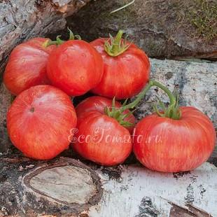Сорт томата Авюри