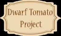 Dwarf Tomato Project (Проект Гном Томатный)