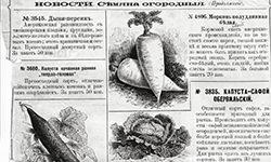 Скачать каталог Грачева Е.А., 1898 год.>