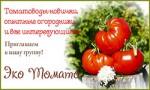 Группа ЭкоТомато в Одноклассниках и ВКонтакте