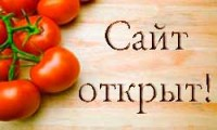 Сайт EcoTomato.ru открыт!