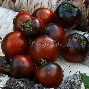 Сорт томата Chestnut Chocolate (Каштановый Шоколад), США