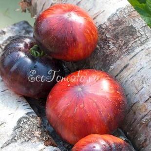 Сорт томата Lovely Lush (Прекрасный пышный), США