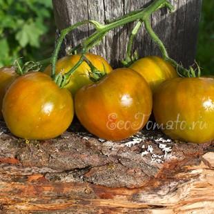 Сорт томата Everett's Rusty Oxheart (Заржавевшее сердце Эверета), США