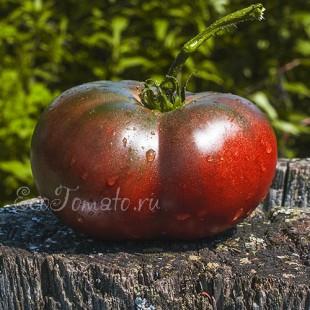 Сорт томата Красно-коричневый из Углича