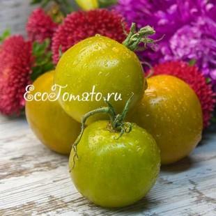 Сорт томата Green Brandy (Зеленый Бренди), США