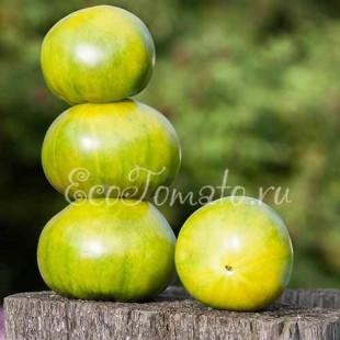 Сорт томата Ирландский Ликер