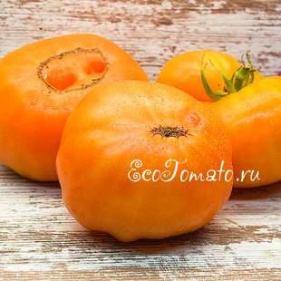 Семена томата Amana Orange, Амана оранжевый, США