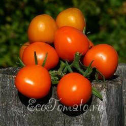 Де Барао оранжевый