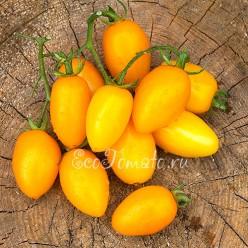 Оранжевые пальчики