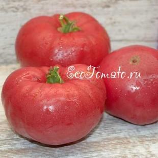 Сорт томата Brandywine (Брендивайн), США