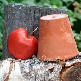 Сорт томата Grandpa's Cock's Plume (Перышко дедушкиного петуха), США