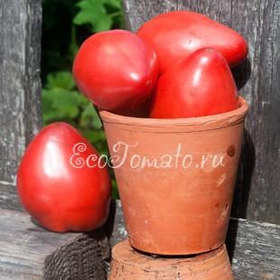 Сорт томата Serbian Oxheart (Сербское сердце), США
