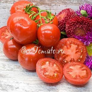 Сорт томата Hell frucht (Хель фрухт), Германия