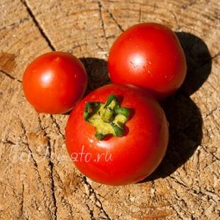 Сорт томата Озалтин