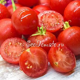 Сорт томата Уникальный Кульчицкого