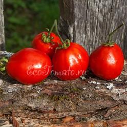 Узелок Красной Шапочки