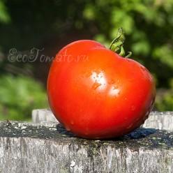 Яблочный Липецкий