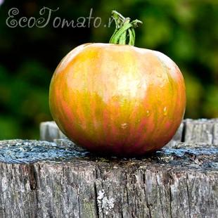 Сорт томата Лимонные полосы чероки