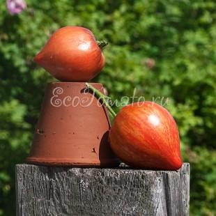 Сорт томата Crushed Heart (Дробленое сердце), США