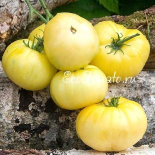 Сорт томата Half moon (Половина Луны, Полумесяц), Китай