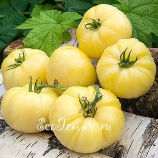 Сорт томата Jack White (Белый Джек)