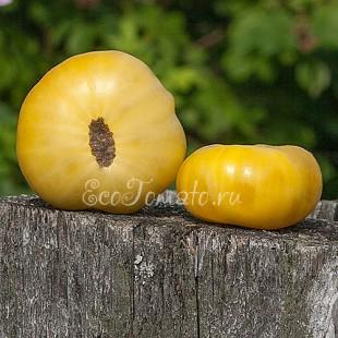 Сорт томата Tiger Paw (Лапа тигра, США)