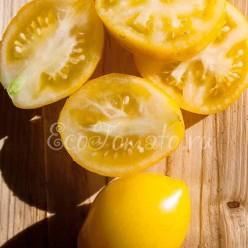 Лимон-лиана